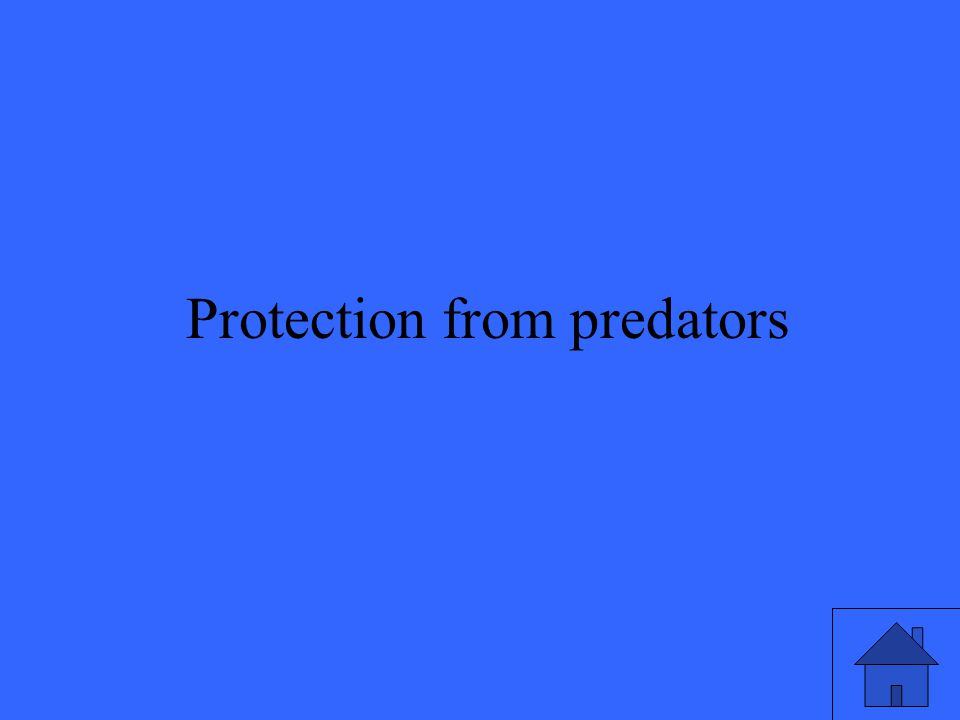 45 Protection from predators