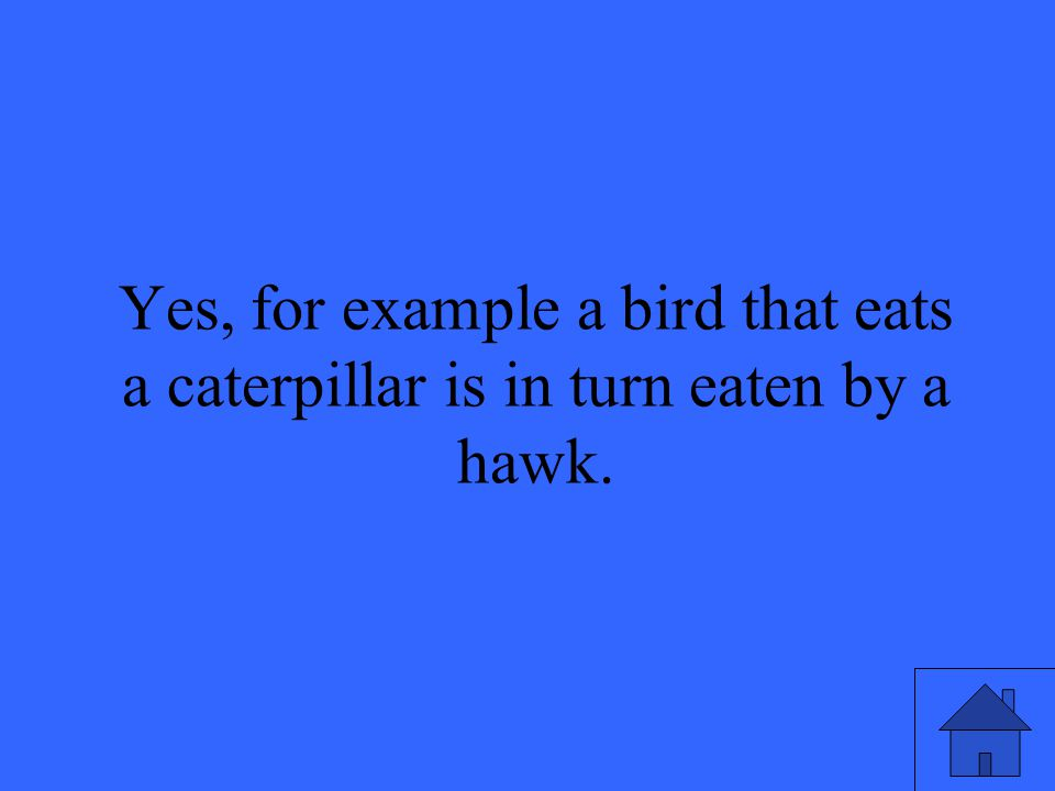 47 Yes, for example a bird that eats a caterpillar is in turn eaten by a hawk.