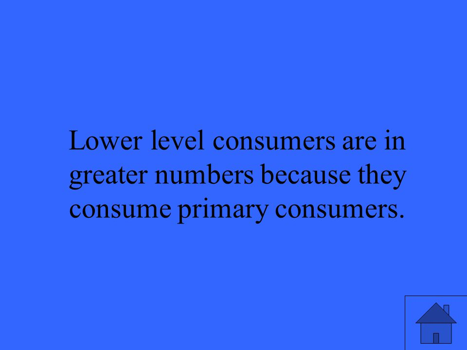 49 Lower level consumers are in greater numbers because they consume primary consumers.