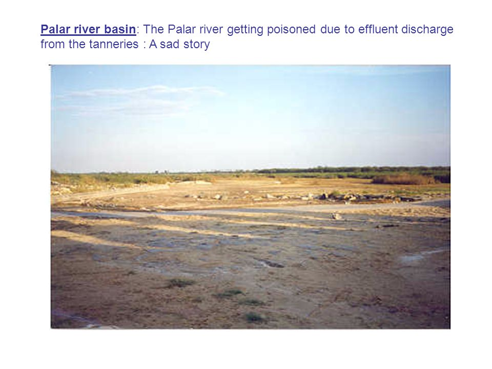 Palar river basin: The Palar river getting poisoned due to effluent discharge from the tanneries : A sad story