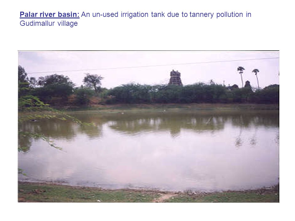 Palar river basin: An un-used irrigation tank due to tannery pollution in Gudimallur village