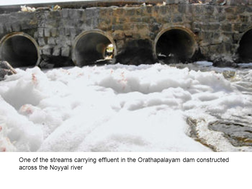 One of the streams carrying effluent in the Orathapalayam dam constructed across the Noyyal river