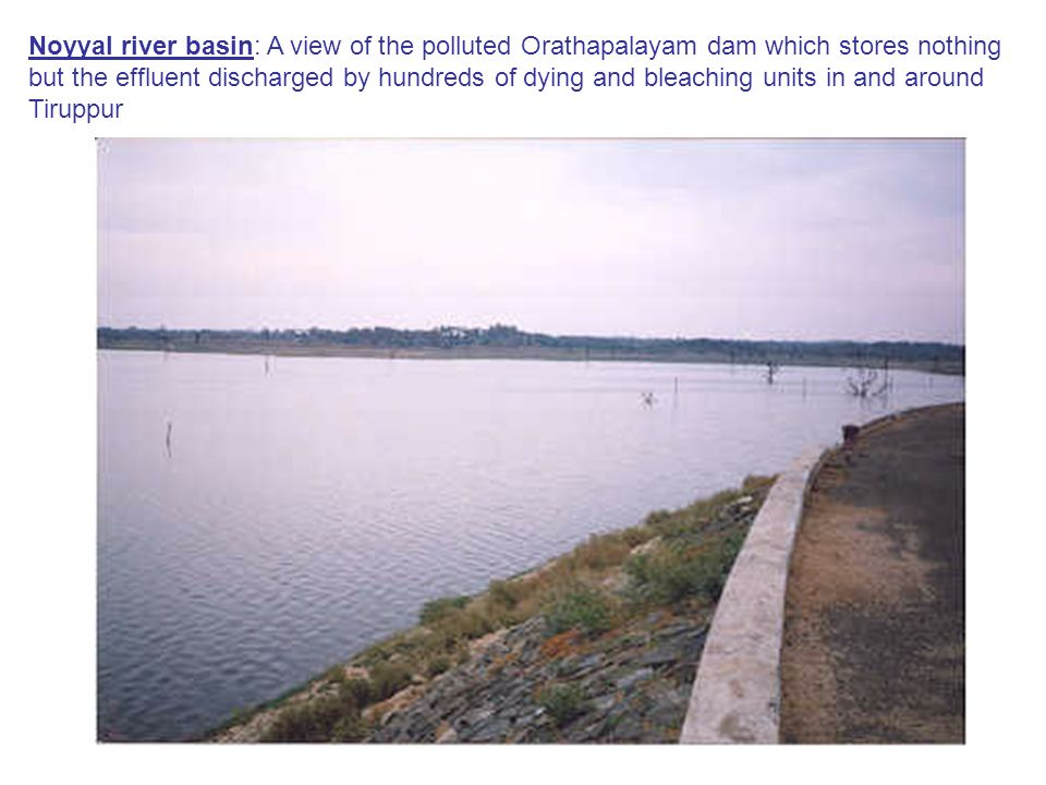 Noyyal river basin: A view of the polluted Orathapalayam dam which stores nothing but the effluent discharged by hundreds of dying and bleaching units in and around Tiruppur