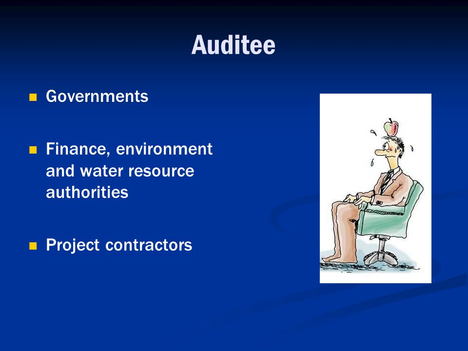 Auditee Governments Finance, environment and water resource authorities Project contractors