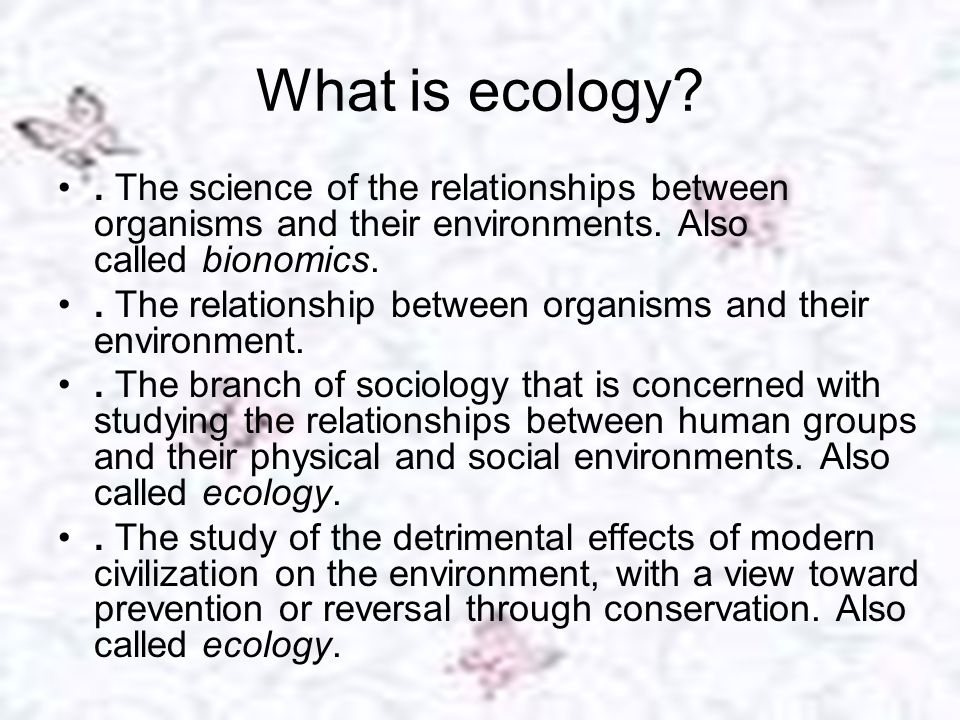 Effects of Human activities on ecology After completing this chapter students will be able to: Discuss the effects of After completing this chapter students will be able to: Discuss the effects of deforestation on soil climate and population.