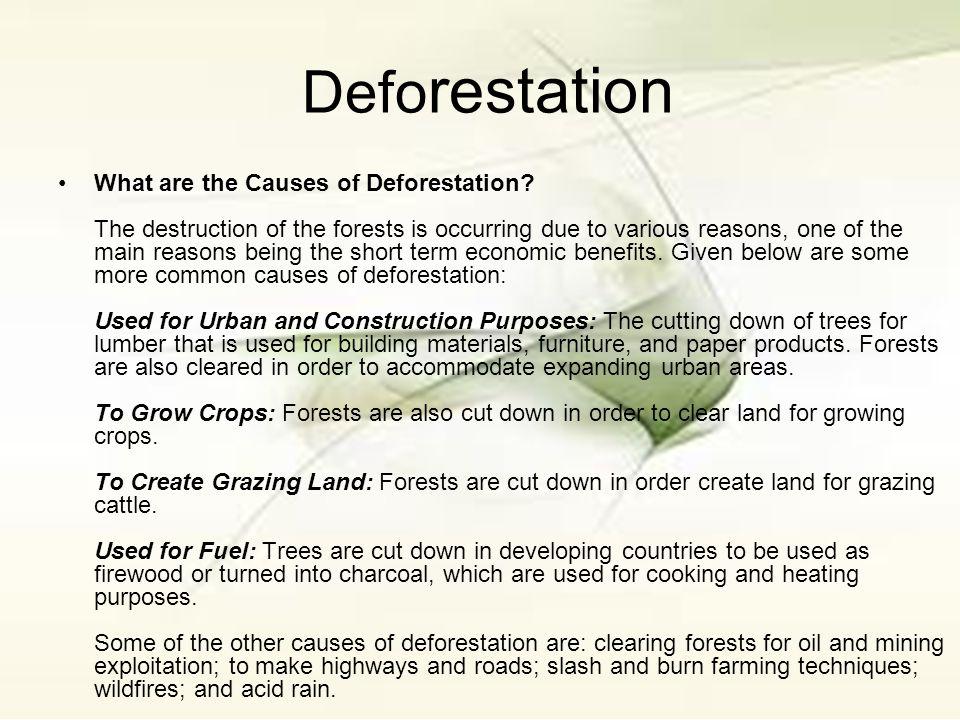 deforestation a general overview essay