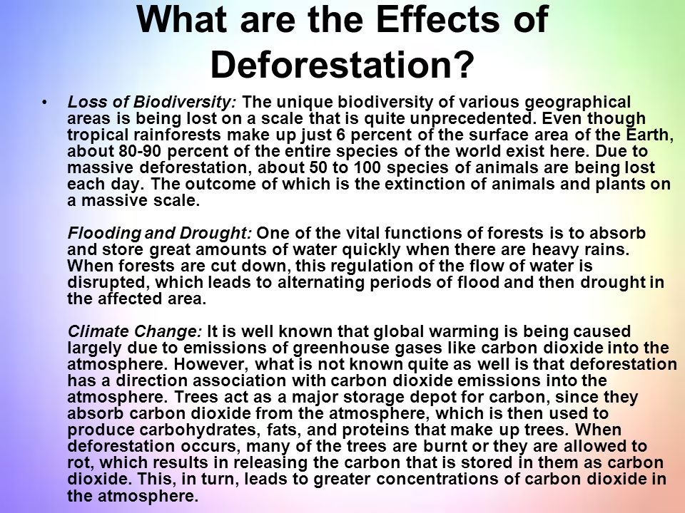 What are the Effects of Deforestation? Loss of Biodiversity: The unique biodiversity of various geographical areas is being lost on a scale that is qu
