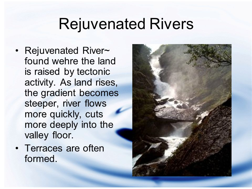 Rejuvenated Rivers Rejuvenated River~ found wehre the land is raised by tectonic activity.
