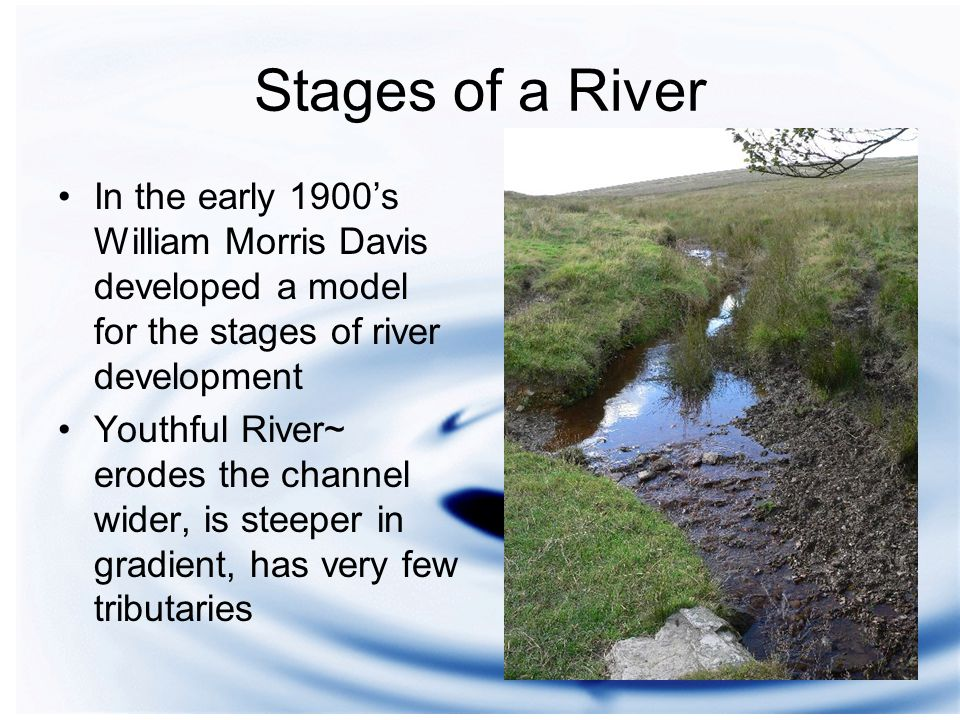 Stages of a River In the early 1900's William Morris Davis developed a model for the stages of river development Youthful River~ erodes the channel wider, is steeper in gradient, has very few tributaries