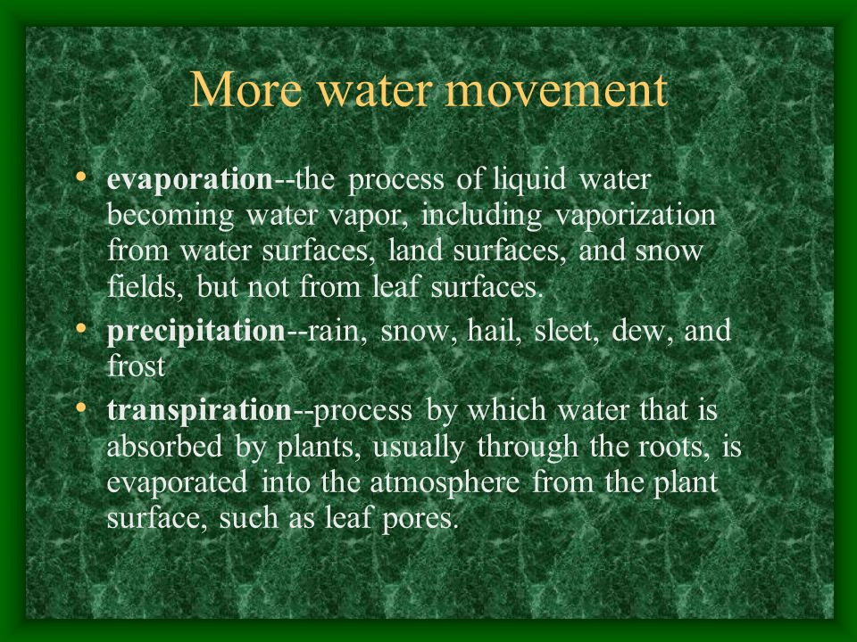 More water movement evaporation--the process of liquid water becoming water vapor, including vaporization from water surfaces, land surfaces, and snow fields, but not from leaf surfaces.