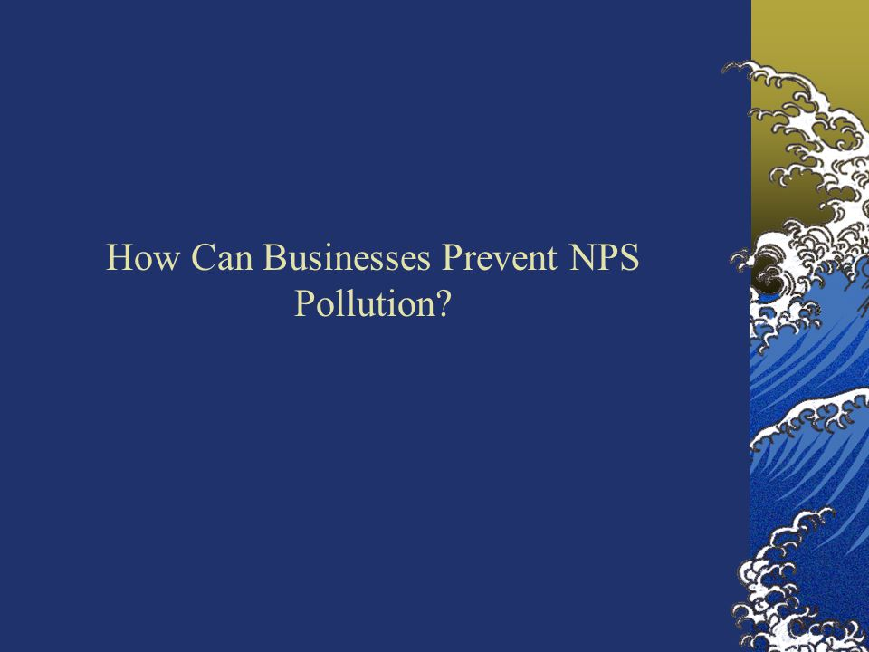 How Can Businesses Prevent NPS Pollution