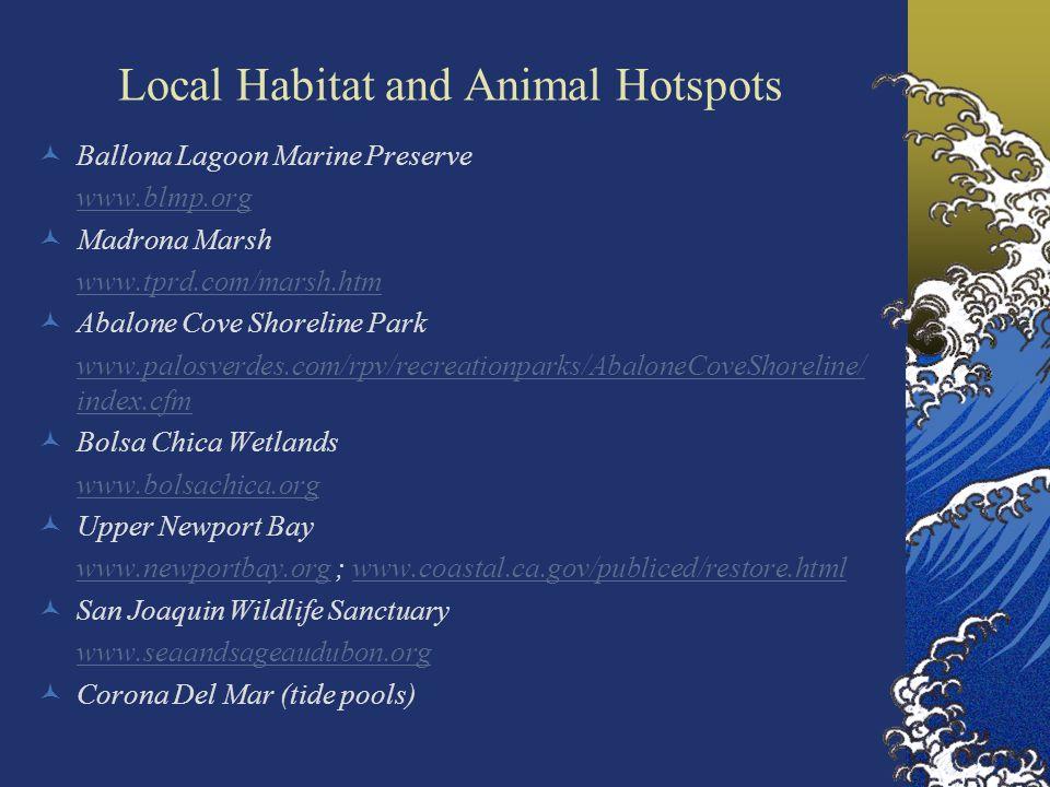 Local Habitat and Animal Hotspots Ballona Lagoon Marine Preserve www.blmp.org Madrona Marsh www.tprd.com/marsh.htm Abalone Cove Shoreline Park www.palosverdes.com/rpv/recreationparks/AbaloneCoveShoreline/ index.cfm Bolsa Chica Wetlands www.bolsachica.org Upper Newport Bay www.newportbay.orgwww.newportbay.org ; www.coastal.ca.gov/publiced/restore.htmlwww.coastal.ca.gov/publiced/restore.html San Joaquin Wildlife Sanctuary www.seaandsageaudubon.org Corona Del Mar (tide pools)