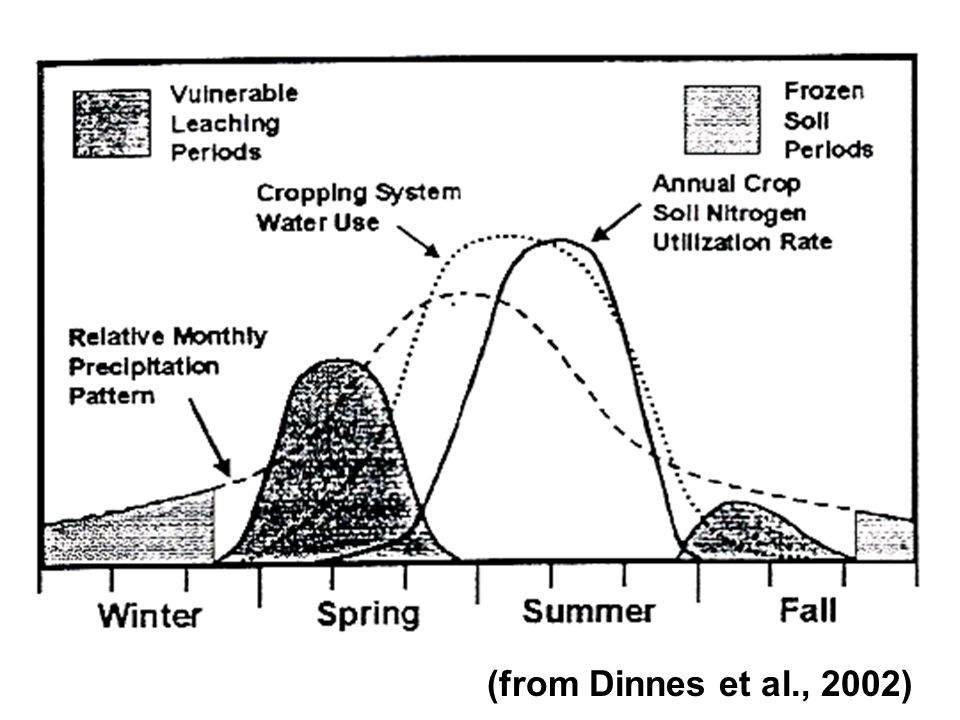 (from Dinnes et al., 2002)