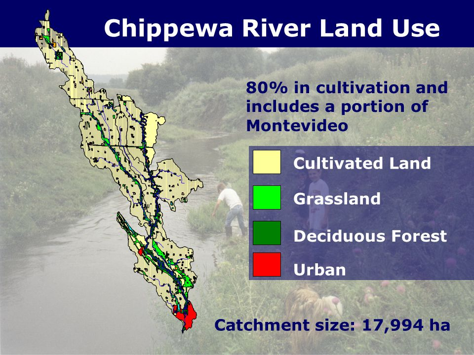 Cultivated Land Grassland Deciduous Forest Urban 80% in cultivation and includes a portion of Montevideo Catchment size: 17,994 ha Chippewa River Land Use
