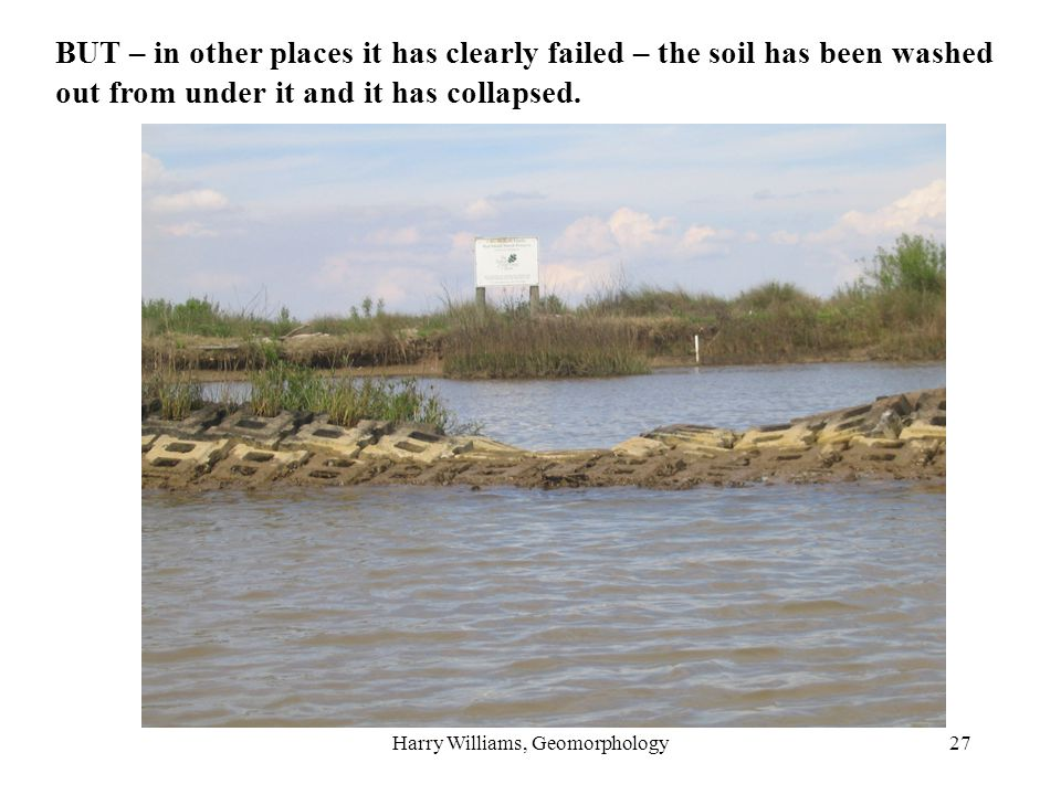 Harry Williams, Geomorphology27 BUT – in other places it has clearly failed – the soil has been washed out from under it and it has collapsed.