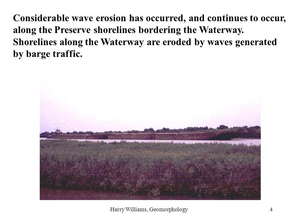 Harry Williams, Geomorphology4 Considerable wave erosion has occurred, and continues to occur, along the Preserve shorelines bordering the Waterway. S