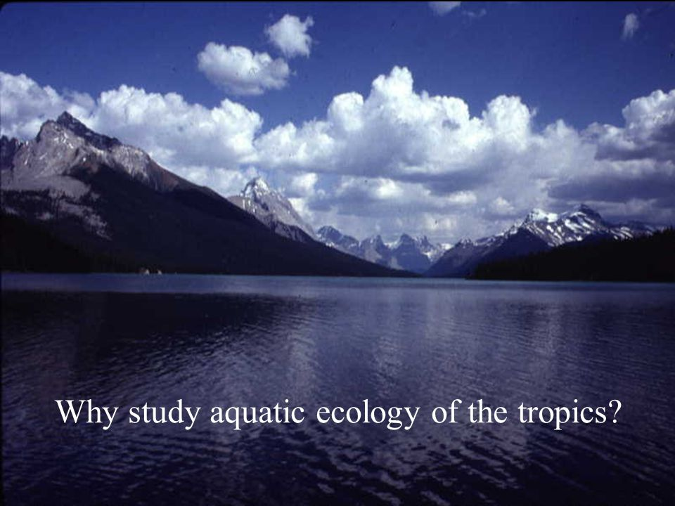 Why study aquatic ecology of the tropics?