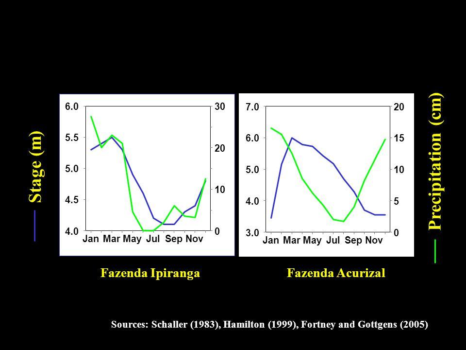 Sources: Schaller (1983), Hamilton (1999), Fortney and Gottgens (2005) Stage (m) Fazenda IpirangaFazenda Acurizal 4.0 4.5 5.0 5.5 6.0 0 10 20 30 JanMarMayJulSepNov 3.0 4.0 5.0 6.0 7.0 0 5 10 15 20 JanMarMayJulSepNov Precipitation (cm)