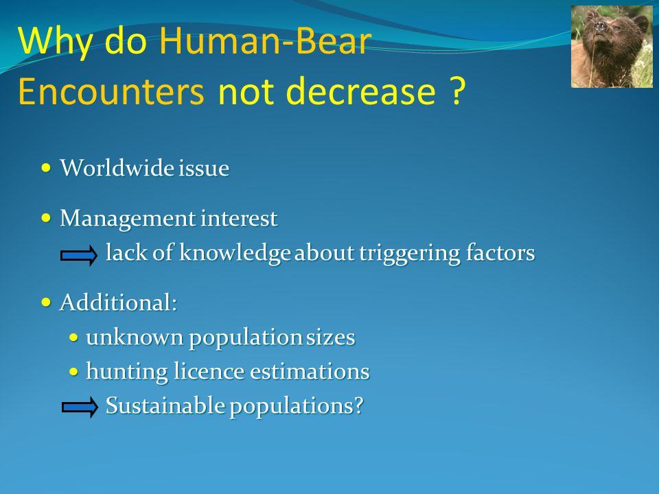 Why do Human-Bear Encounters not decrease .