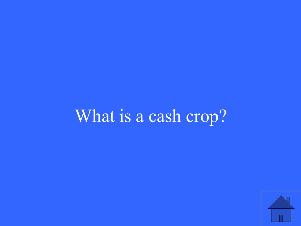 What is a cash crop?