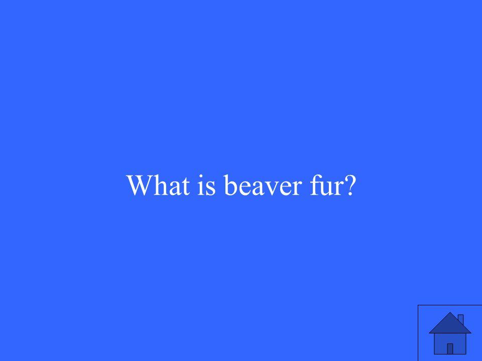What is beaver fur?