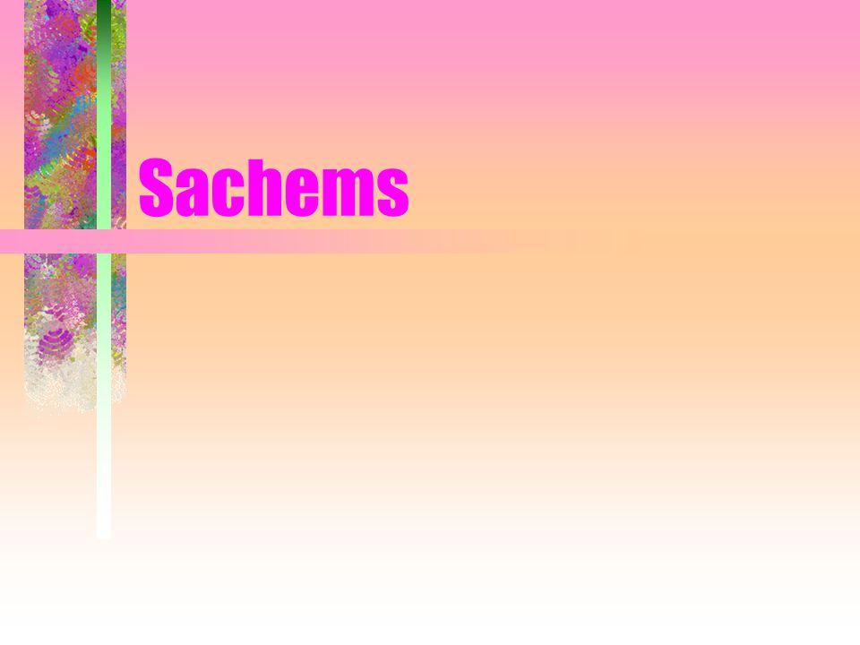 Sachems
