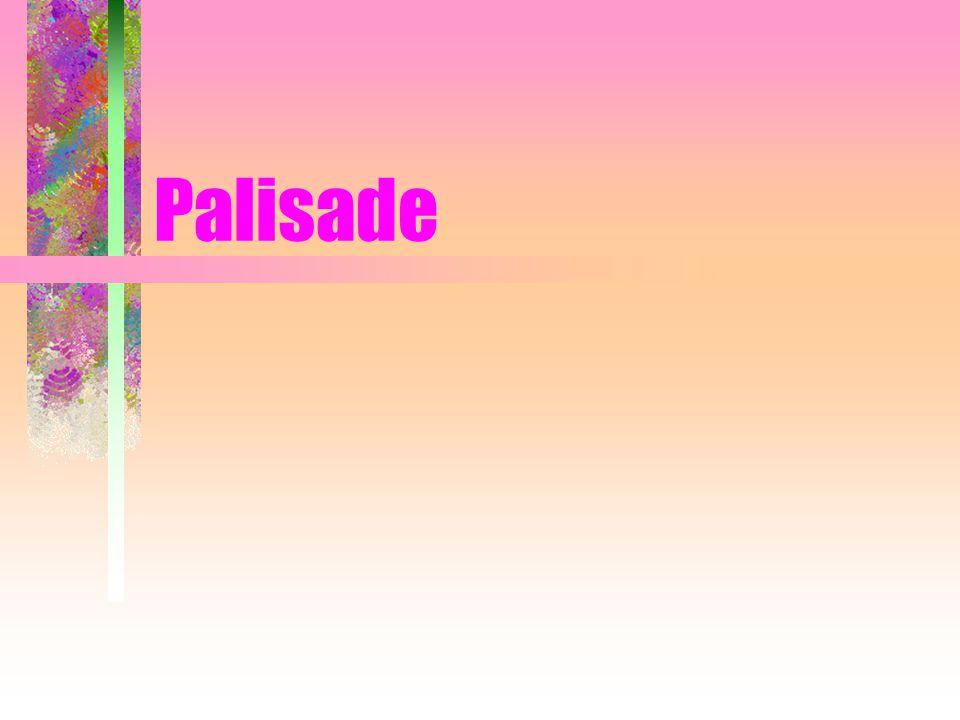Palisade