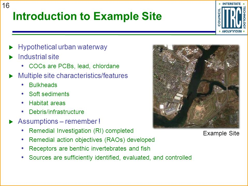 16 Introduction to Example Site  Hypothetical urban waterway  Industrial site COCs are PCBs, lead, chlordane  Multiple site characteristics/features Bulkheads Soft sediments Habitat areas Debris/infrastructure  Assumptions – remember .