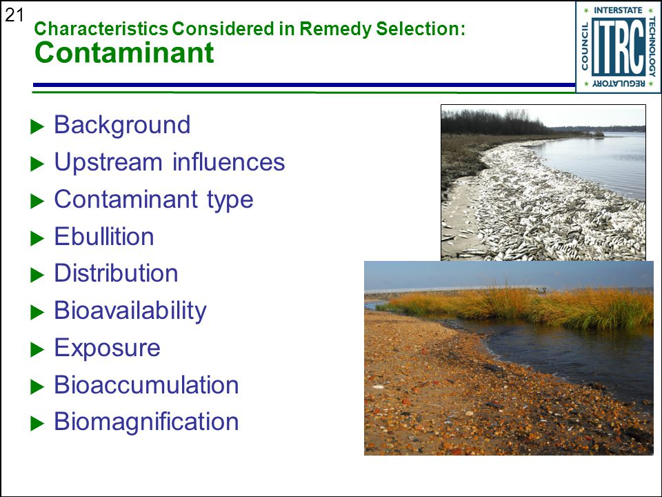 21 Characteristics Considered in Remedy Selection: Contaminant  Background  Upstream influences  Contaminant type  Ebullition  Distribution  Bioavailability  Exposure  Bioaccumulation  Biomagnification