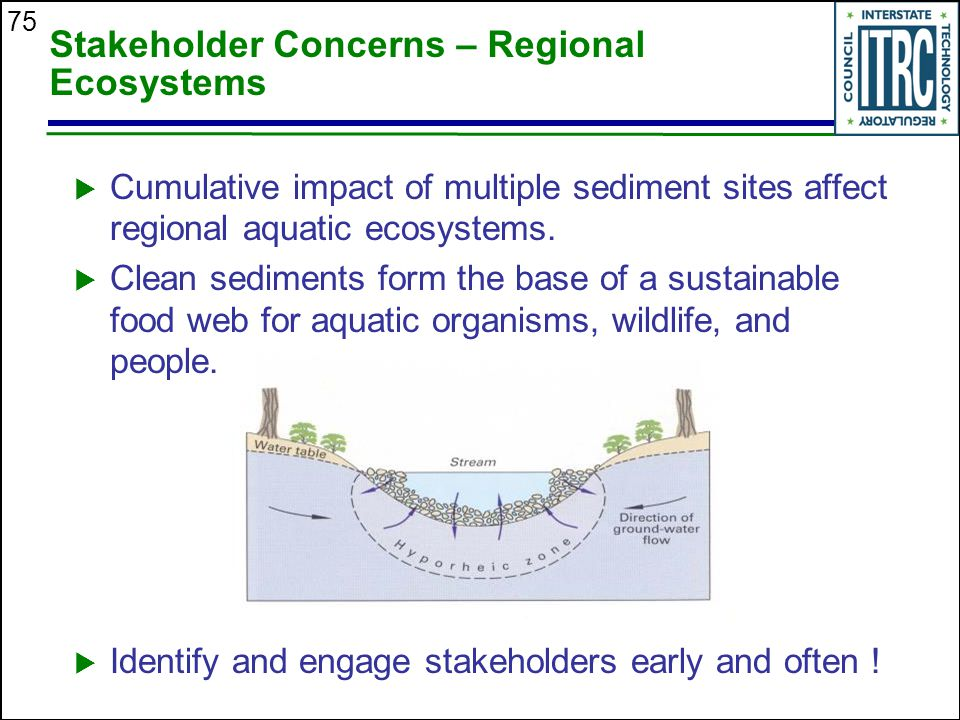 75 Stakeholder Concerns – Regional Ecosystems  Cumulative impact of multiple sediment sites affect regional aquatic ecosystems.