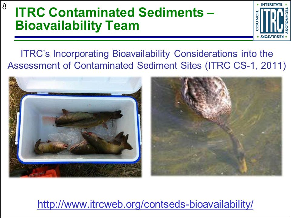 8 ITRC Contaminated Sediments – Bioavailability Team ITRC's Incorporating Bioavailability Considerations into the Assessment of Contaminated Sediment Sites (ITRC CS-1, 2011) http://www.itrcweb.org/contseds-bioavailability/