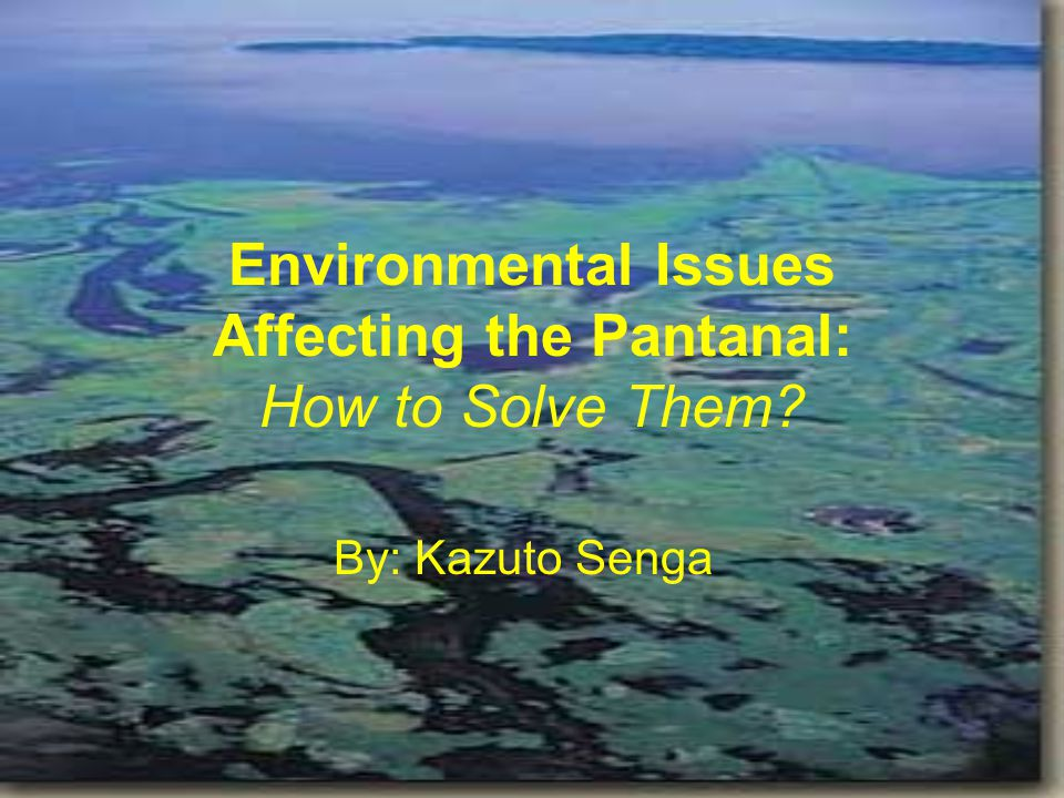 Environmental Issues Affecting the Pantanal: How to Solve Them By: Kazuto Senga
