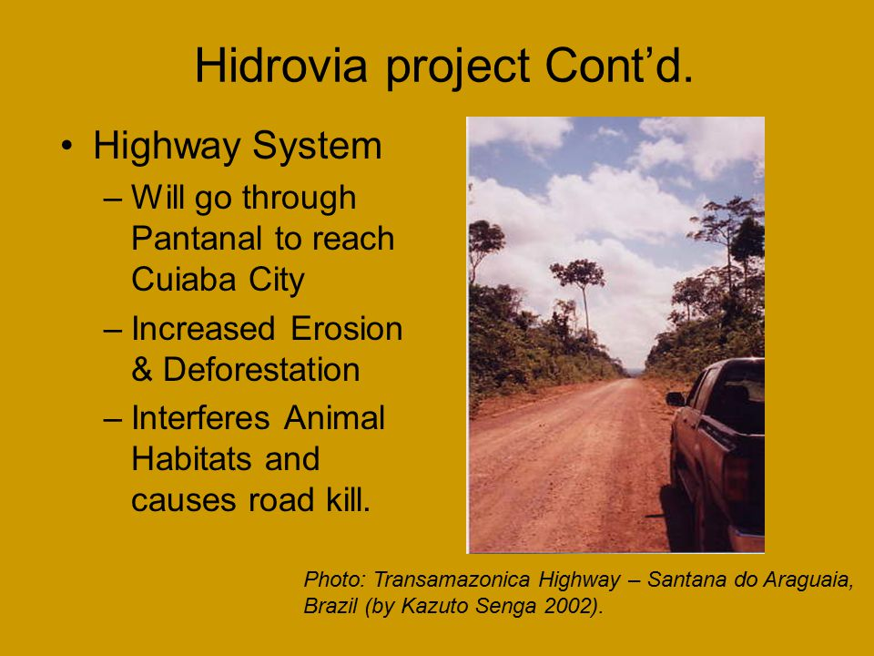 Hidrovia project Cont'd. Highway System –Will go through Pantanal to reach Cuiaba City –Increased Erosion & Deforestation –Interferes Animal Habitats