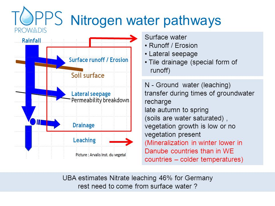 Nitrogen water pathways Surface water Runoff / Erosion Lateral seepage Tile drainage (special form of runoff) N - Ground water (leaching) transfer during times of groundwater recharge late autumn to spring (soils are water saturated), vegetation growth is low or no vegetation present (Mineralization in winter lower in Danube countries than in WE countries – colder temperatures) UBA estimates Nitrate leaching 46% for Germany rest need to come from surface water