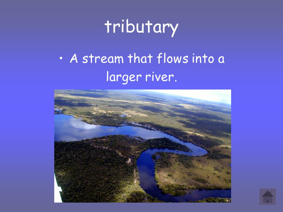 tributary A stream that flows into a larger river.