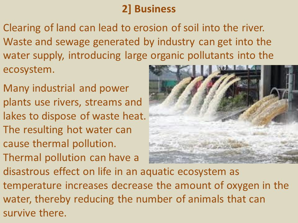 2] Business Clearing of land can lead to erosion of soil into the river. Waste and sewage generated by industry can get into the water supply, introdu