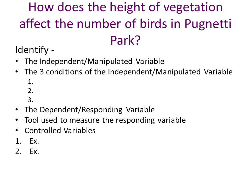 How does the height of vegetation affect the number of birds in Pugnetti Park.
