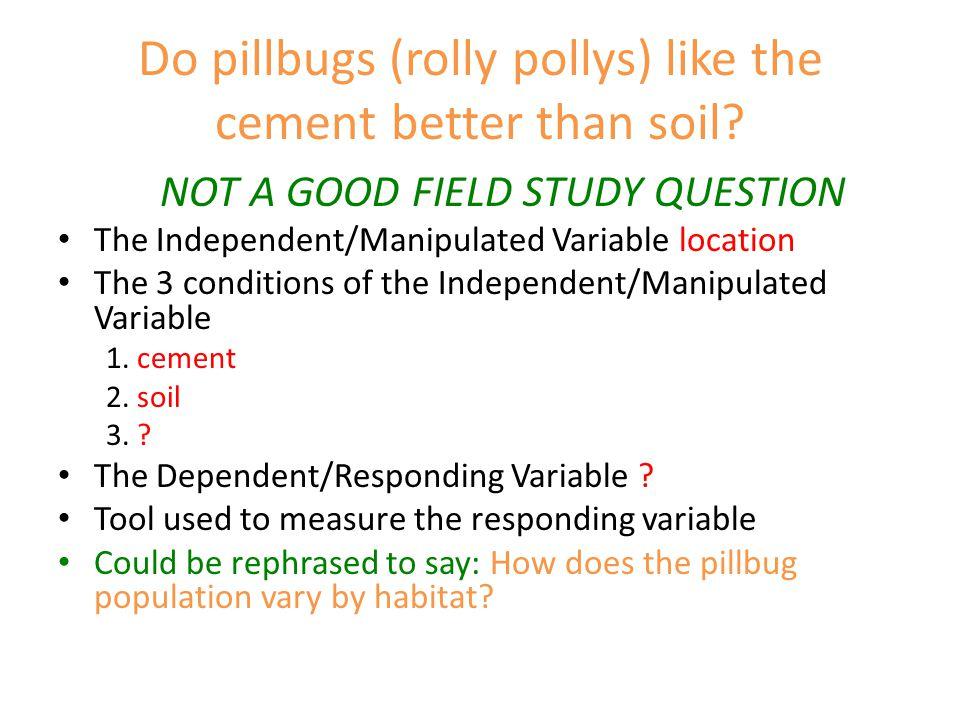 Do pillbugs (rolly pollys) like the cement better than soil.