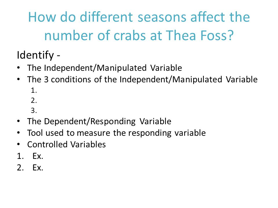 How do different seasons affect the number of crabs at Thea Foss.