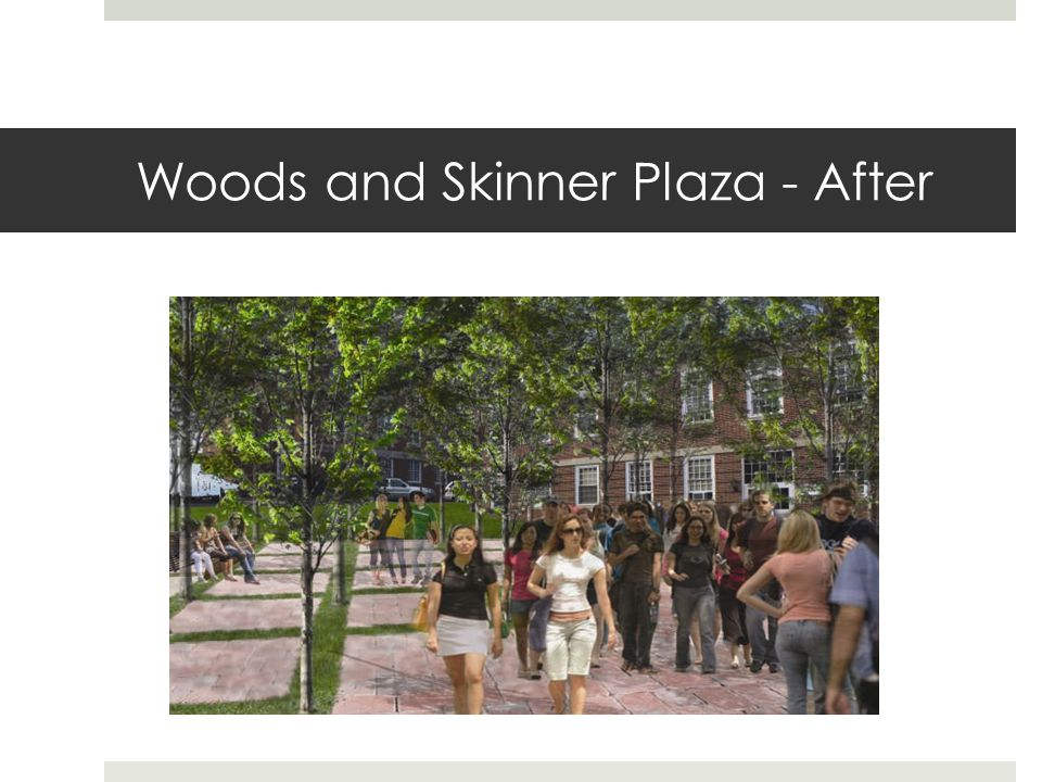 Woods and Skinner Plaza - After