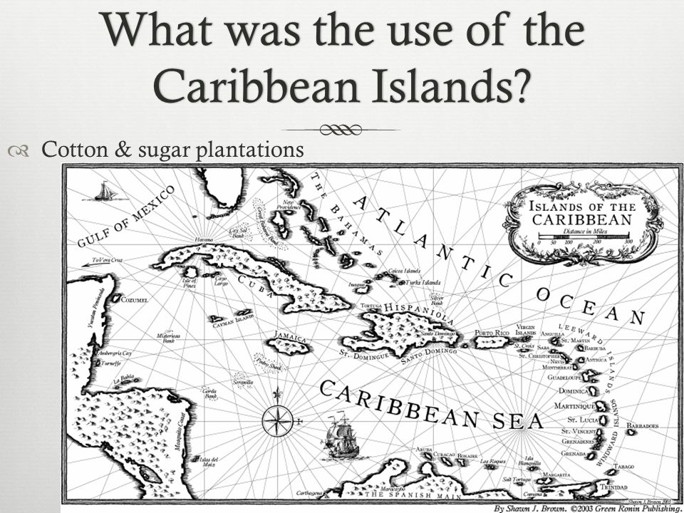What was the use of the Caribbean Islands  Cotton & sugar plantations