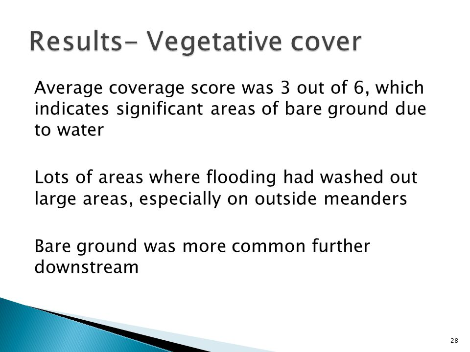 Average coverage score was 3 out of 6, which indicates significant areas of bare ground due to water Lots of areas where flooding had washed out large areas, especially on outside meanders Bare ground was more common further downstream 28