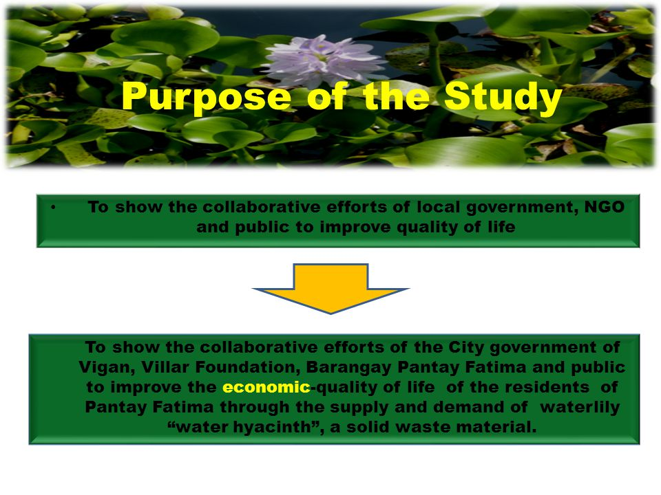 To show the collaborative efforts of local government, NGO and public to improve quality of life Purpose of the Study To show the collaborative effort
