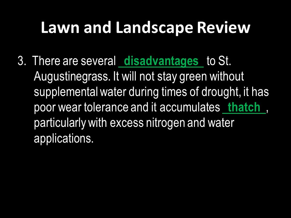 Lawn and Landscape Review 3. There are several disadvantages to St. Augustinegrass. It will not stay green without supplemental water during times of
