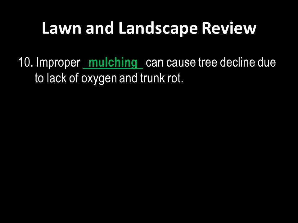 Lawn and Landscape Review 10. Improper mulching can cause tree decline due to lack of oxygen and trunk rot.