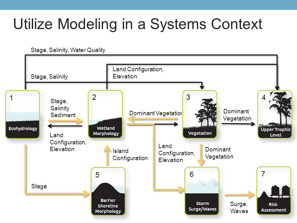 Utilize Modeling in a Systems Context Surg e Upper Trophic Stage, Salinity Sediment Stage, Salinity Stage, Salinity, Water Quality Dominant Vegetation
