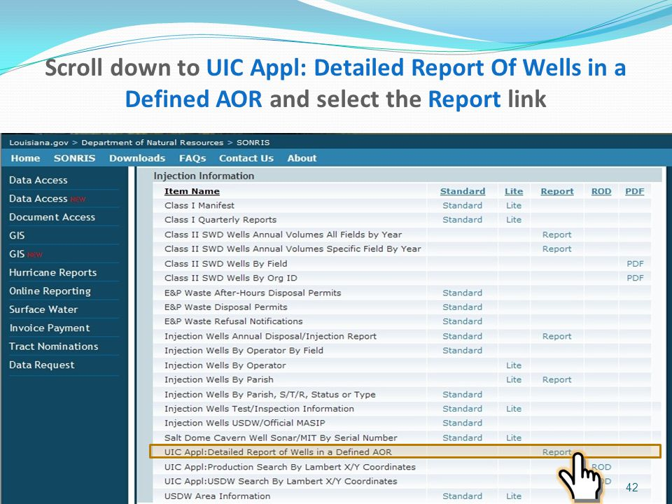 Scroll down to UIC Appl: Detailed Report Of Wells in a Defined AOR and select the Report link 42