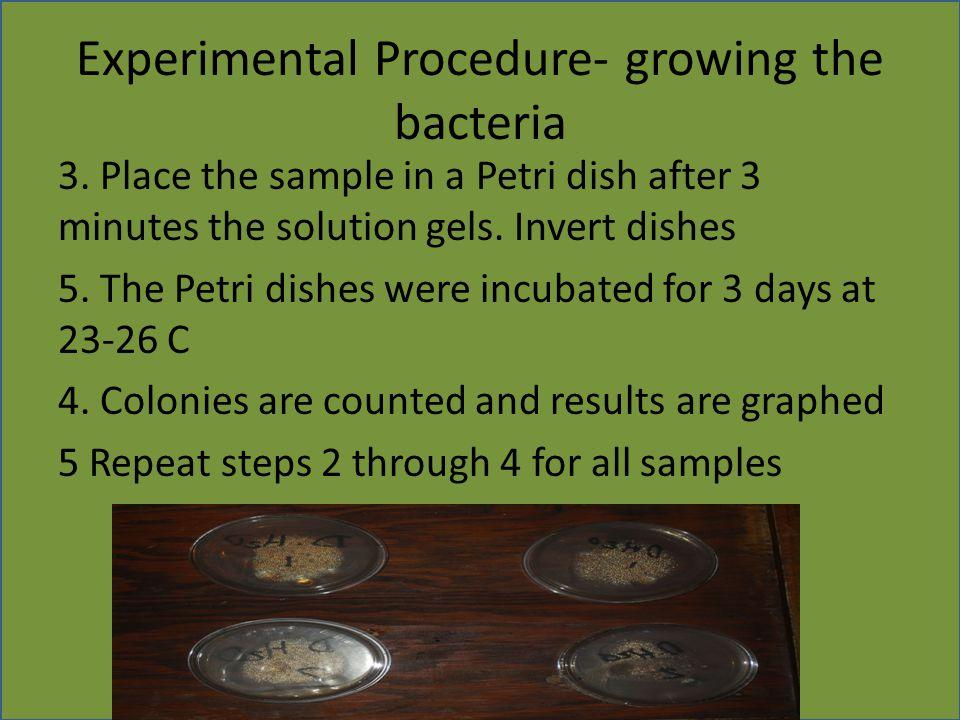 Experimental Procedure- growing the bacteria 3.