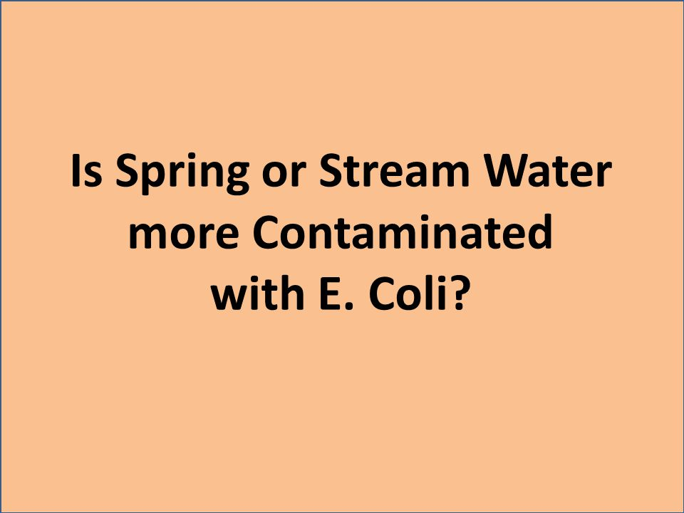 Is Spring or Stream Water more Contaminated with E. Coli
