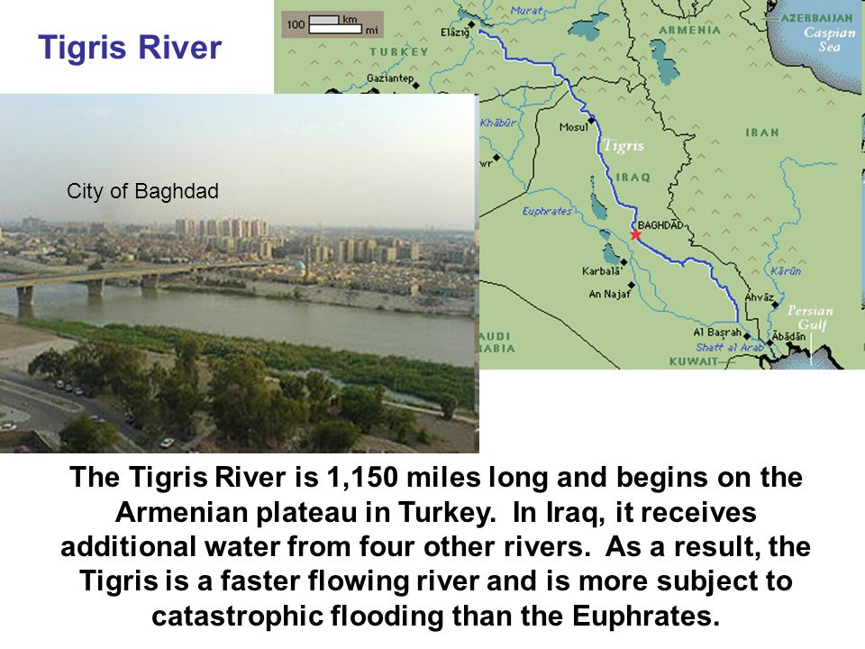 Tigris River The Tigris River is 1,150 miles long and begins on the Armenian plateau in Turkey.